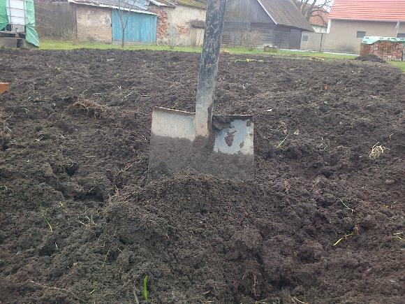 Únor na zahradě: chystejte záhony a sazenice