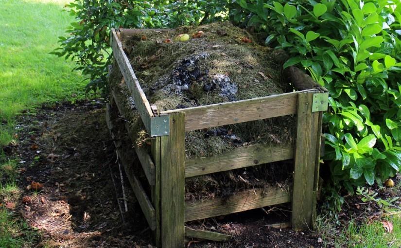 5 tipů na přírodní hnojiva