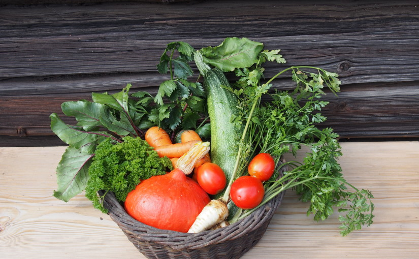 Září v zeleninové zahradě