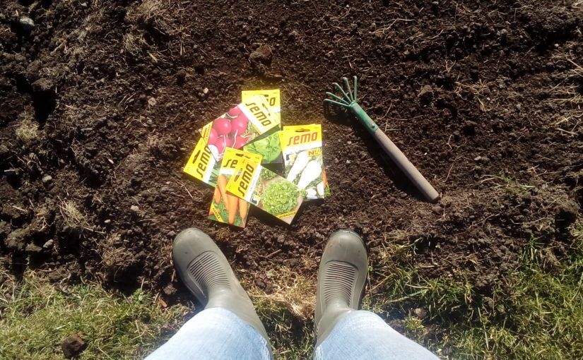 Březen je měsíc výsevu. Ředkviček, salátů, mrkve nebo petržele