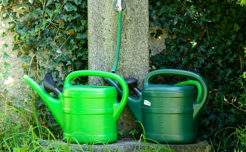 Ach ta voda! Jak úsporně zalévat v parném létě?