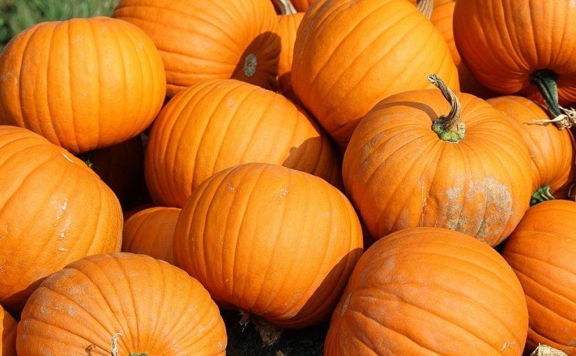 Podzim patří dýním. Co z nich uvařit a upéct?