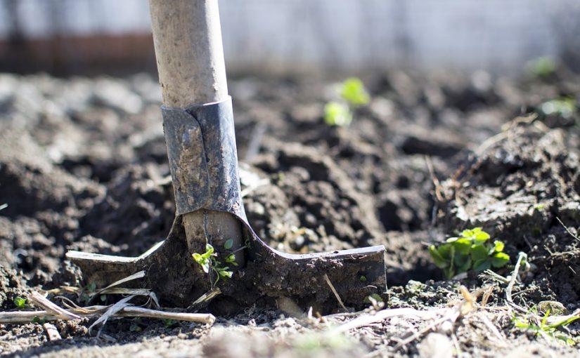 Příprava záhonů. Kdy rýt? A jak na jaře hnojit?