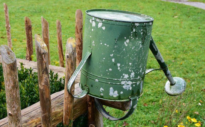 Voda! Jak zalévat zahradu, když neprší?