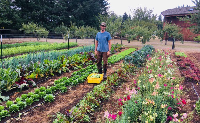Farmář Steve: Zeleninu pěstuje rukama a sám ji prodává na místním trhu